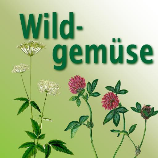 Wildpflanzen für die Verwendung in der Küche erkennen, sammeln und zubereiten